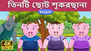 তিনটি ছোট শূকরছানা | Three Little Pigs in Bengali | 4K UHD  | Bangla Cartoon | Bengali Fairy Tales