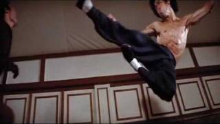 Bruce Lee Fly Kick