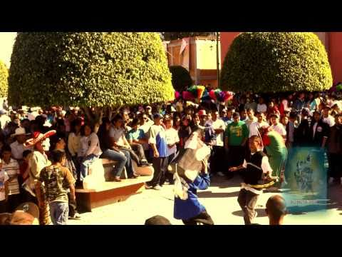 Fiesta Romita Guanajuato 2010