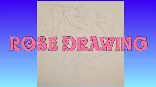 Rose drawing 🌹