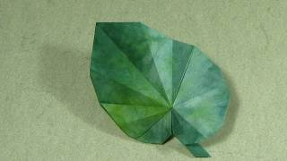 Origami Instructions: Begonia Leaf (peter Engel)