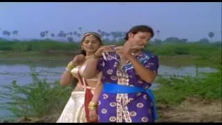 Sharmishtha Makwana nice navel song