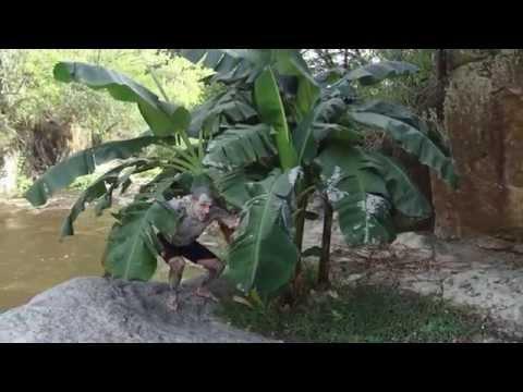 Costa Rica Barcelo Langosta Beach video review