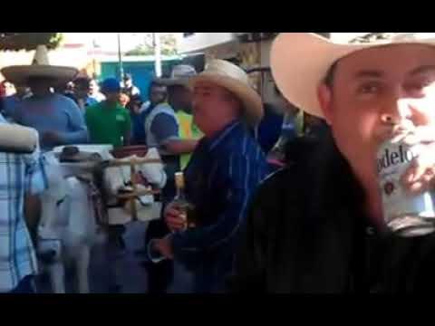 El Burro en El Sabino Guanajuato con Banda San Miguel