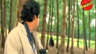 Nadodi Mannan - Nadodi 1992: Full Malayalam Movie
