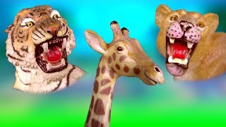 Learn about Wild Animals and their Names - Zoo Animals for Kids - Fun Toys for Children