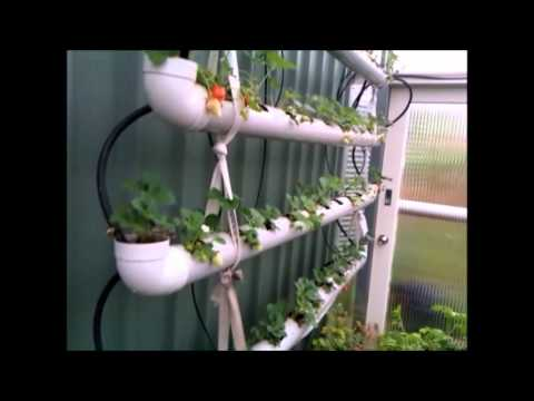 4 Tier Strawberry Planter Using Storm Waterpipe Part 2