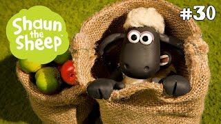 Táo và Tức Tối - Những Chú Cừu Thông Minh [Fruit and Nuts]