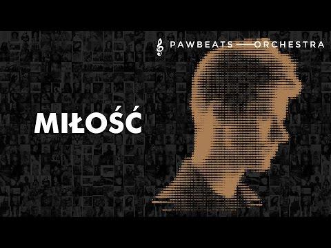 Pawbeats - Miłość