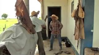 Adriano Soares - repórter, É Bem Mato Grosso Pantanal,  bloco 02