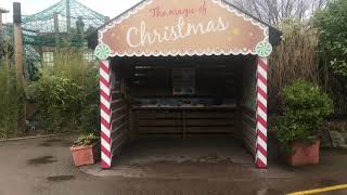 Colchester Zoo @ Christmas