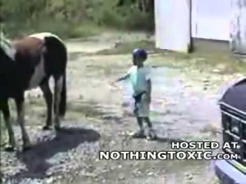 la peor patada de caballo a niño
