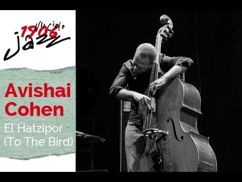 Avishai Cohen - El Hatzipor
