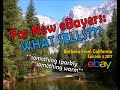 eBay Beginners: What Do You Buy To Resell?? Stories of what sold and why-Barbara From California #4