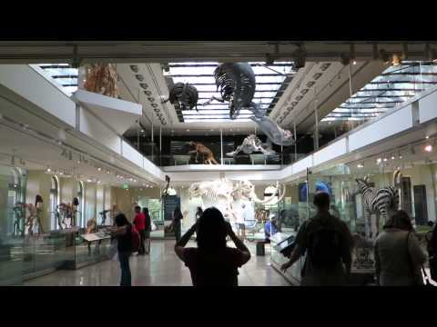 Episode 01: A Day at the History Museum 2014