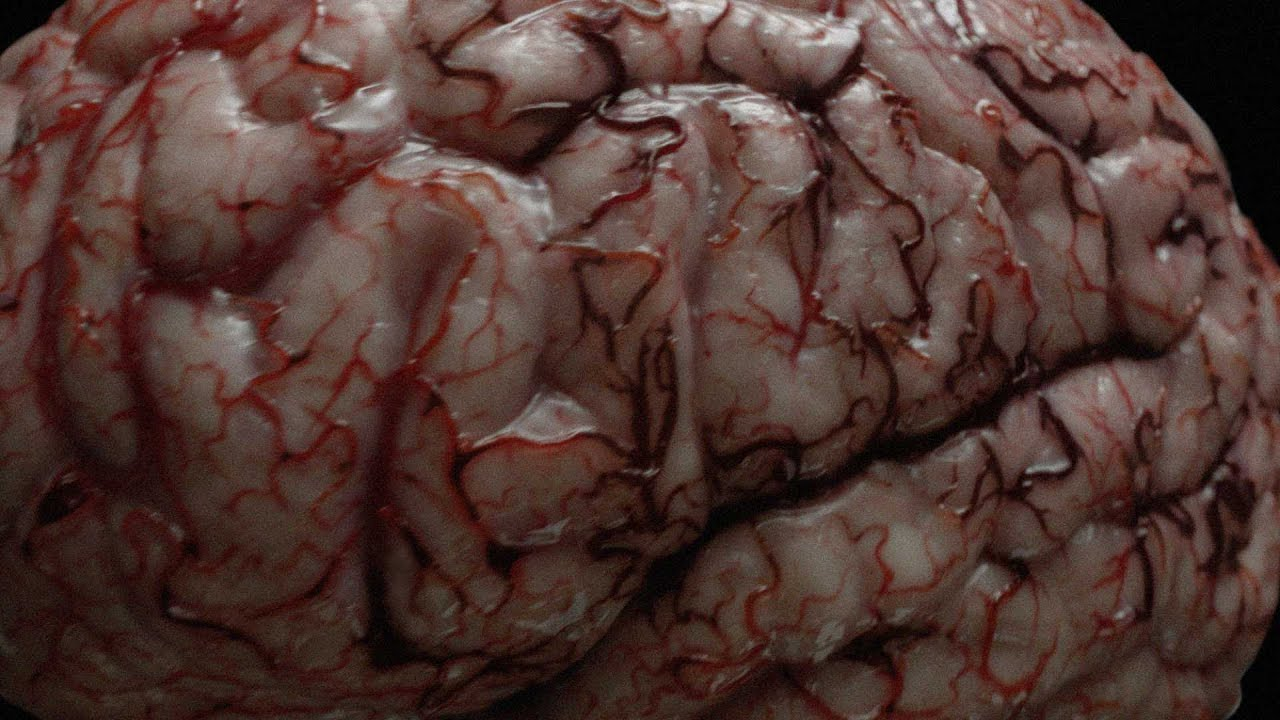 brain affected by smoking - photo #34
