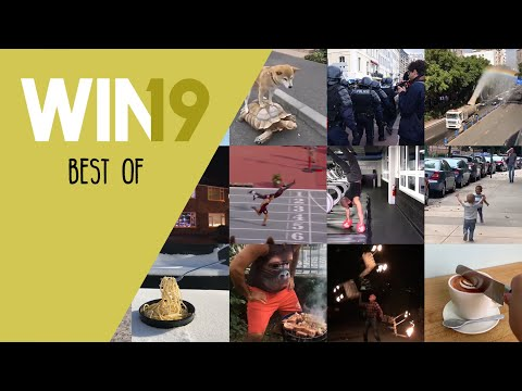 WIN Compilation Best of 2019 Videos of the Year