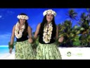 Hula dance - little brown gal - youtube