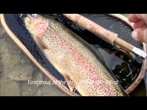 Canon eos rebel t4i/ 650d sample test video 24fps fly fishing San Juan River Jan 2013