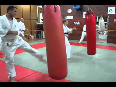 Kyokushin is all about training hard! Image 1