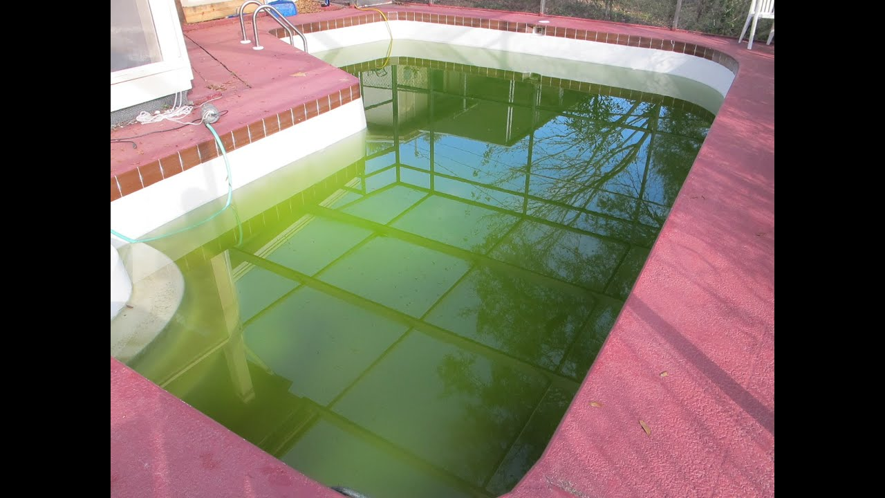 How to clear up green swimming pool water pt 1 youtube for How much water is in a swimming pool