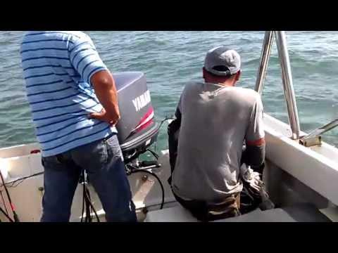 Fishing  Malaysia