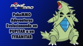PokeMMO Adventures - Evolucionando un PUPITAR a un TYRANITAR