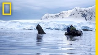 Trailer   Continent 7: Antarctica