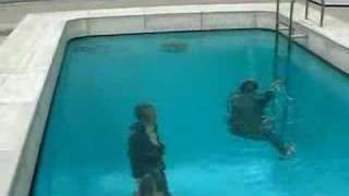 Une fausse piscine Japonaise