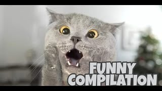 NEW FUNNY COMPILATION with AaronsAnimals