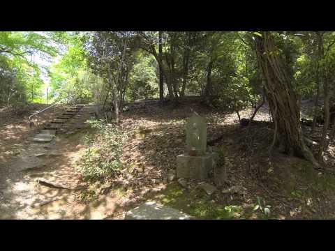 Todai Ji a Nara: 27 minuti tra templi sacri