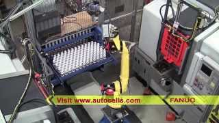 Robotic Machine Tool Loading System with FANUC Robot - Automated Cells & Equipment