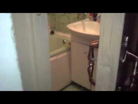 Gatos - No me molesten en el baño