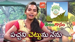 Pachani Chettunu Nenu Song by Folk Singer Bhavana | Latest Telangana Folk Songs