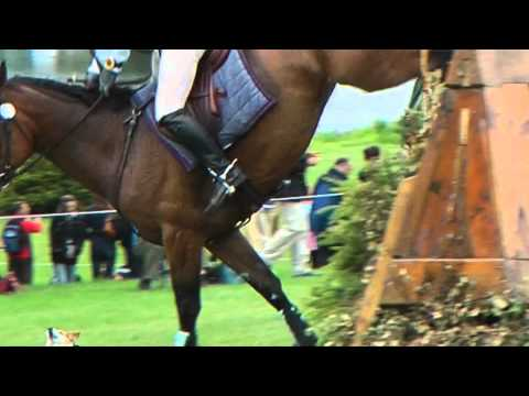 Control Your Dog – Blenheim Palace Horse Trials 2011