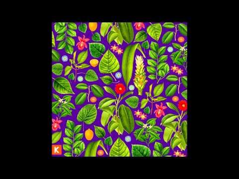 Kings Kaleidoscope - Glorious