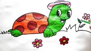 Drawing and painting the turtle Manuelita