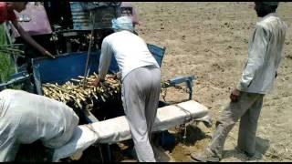Kisan krishi Yantra(Mandona Jafrabad)Tractor2