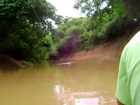 pescaria de mandi na corredeira no rio paracatu