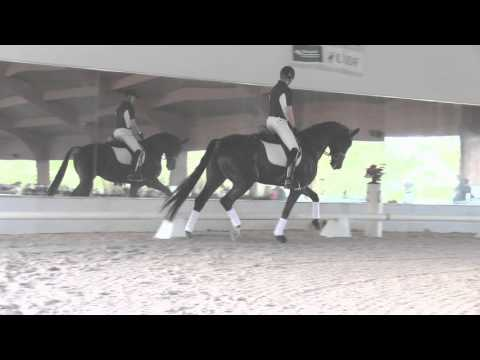 Johann Hinnemann: Riding Your Horse in Front of the Vertical