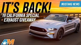 2019 Ford Mustang California Special + 2019  Mustang Saleen Revealed  - Mustang News