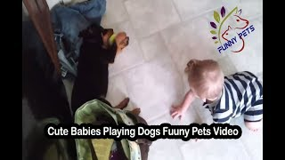 Cute Babies Playing Dogs Funny Pets Video | Funny Dog Videos | Funny Pets