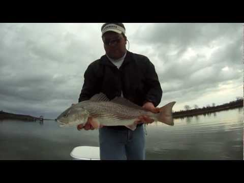The Best Fishing Charter Myrtle Beach Homepage Video HD