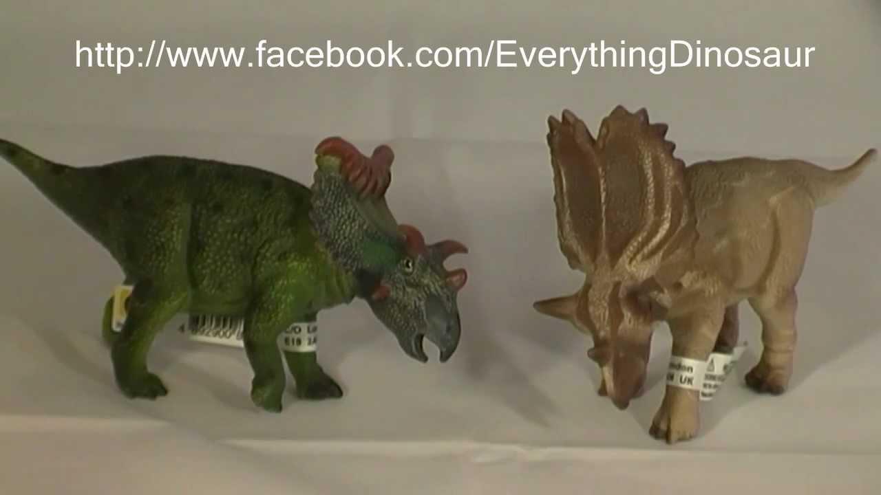 Utahceratops Dinosaur Train and Utahceratops Dinosaur