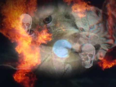 Big Pussy - Apocalypse Meow video