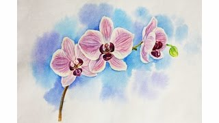 Drawing lessons. How to draw an orchid, whatercolour flower