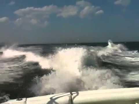 Offshore Sport Fishing Ocean City Maryland