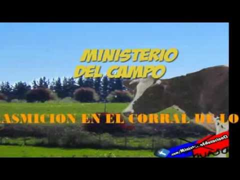 Ministerio Del Campo EnVIVO    Pagina 0 de 365   