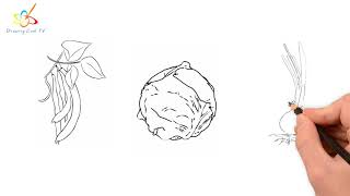 Drawing Vegetable - Beans - Cabbage - Onion | Drawing Cool TV