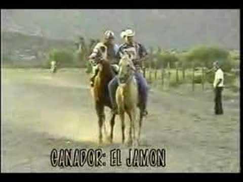 Carrera De Caballos Matehuala San Luis Potosi